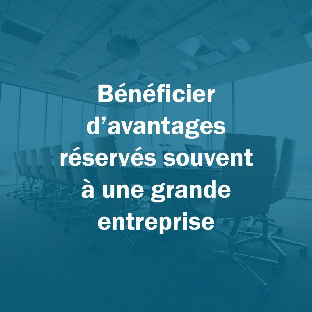 chef entreprise adhérent : Bénéficier d'avantages réservés souvent à une grande entreprise